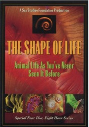 shapeoflife_cover