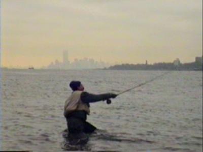 GothamFish6