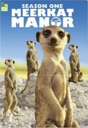 meerkat-manor